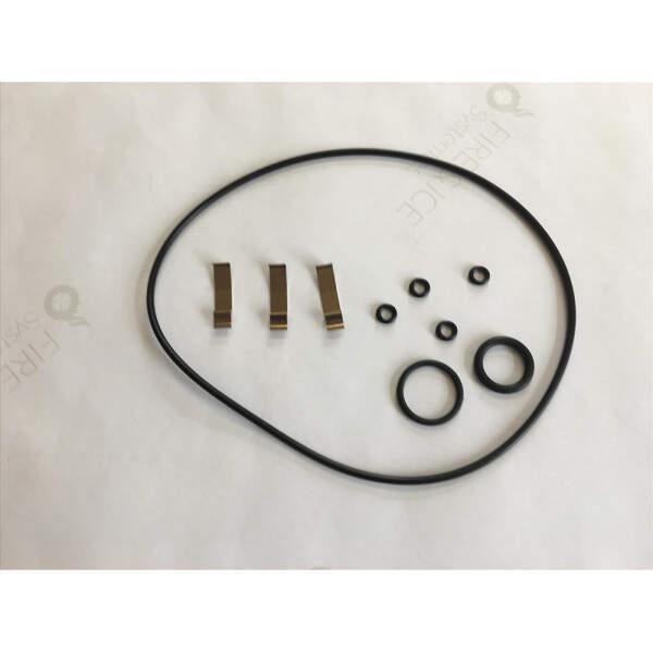 O-Ring-Dichtung für Dampfgeneratoren (E-2206054)